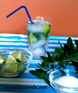 Mom a la Mode's Mojito